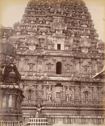 Portion of carvings on the Gopuram, Tanjore. The figure in a hat is considered to be a prophetic representation of an Englishman & called